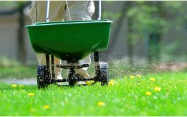 Fertilize The Lawn In Safety